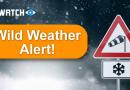 wild weather alert